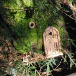 Natural Pod - Bundle - Fairy - Door and Ladder