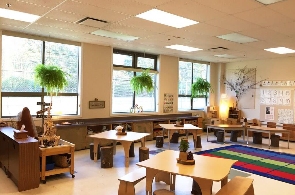How Natural Elements Can Change a Classroom