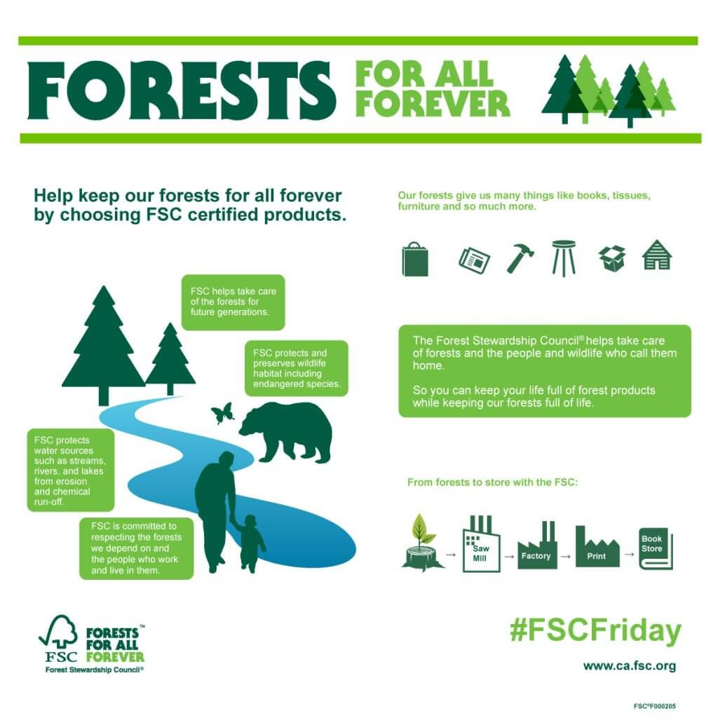 we should protect and preserve our rainforest