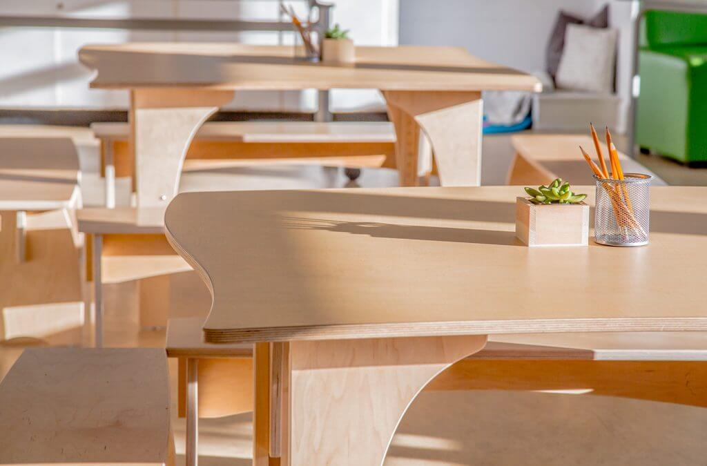 Using Forests Responsibly – Our Furniture is FSC Certified