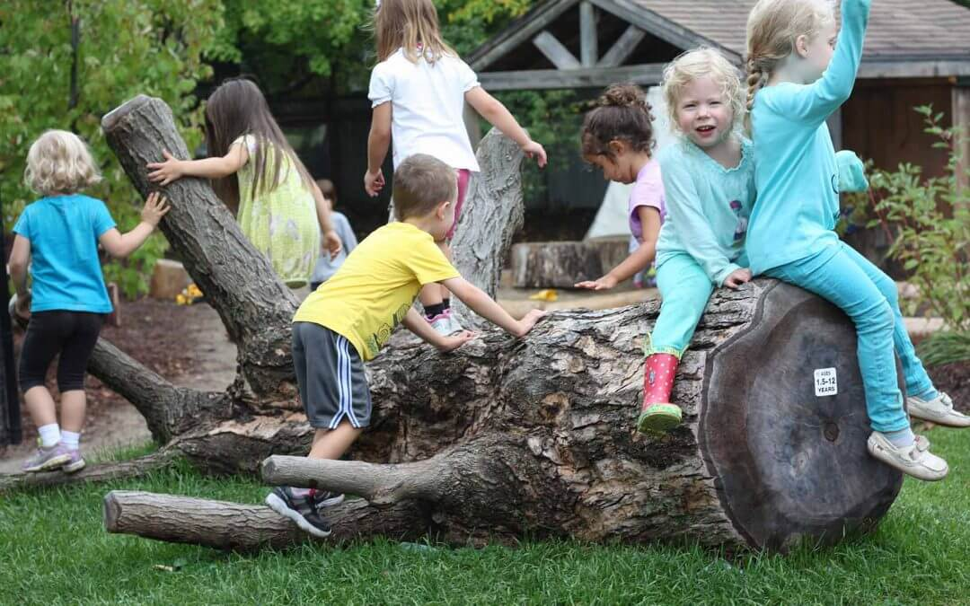 Natural Playground Features For Physical Literacy