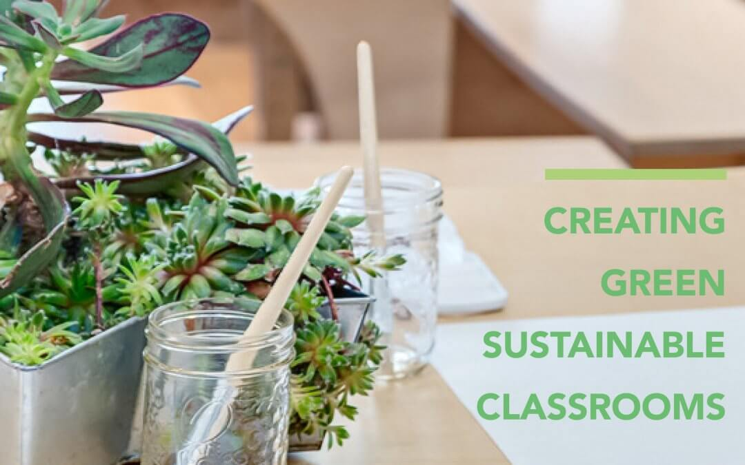 Easy Steps To Creating A Green Sustainable Classroom