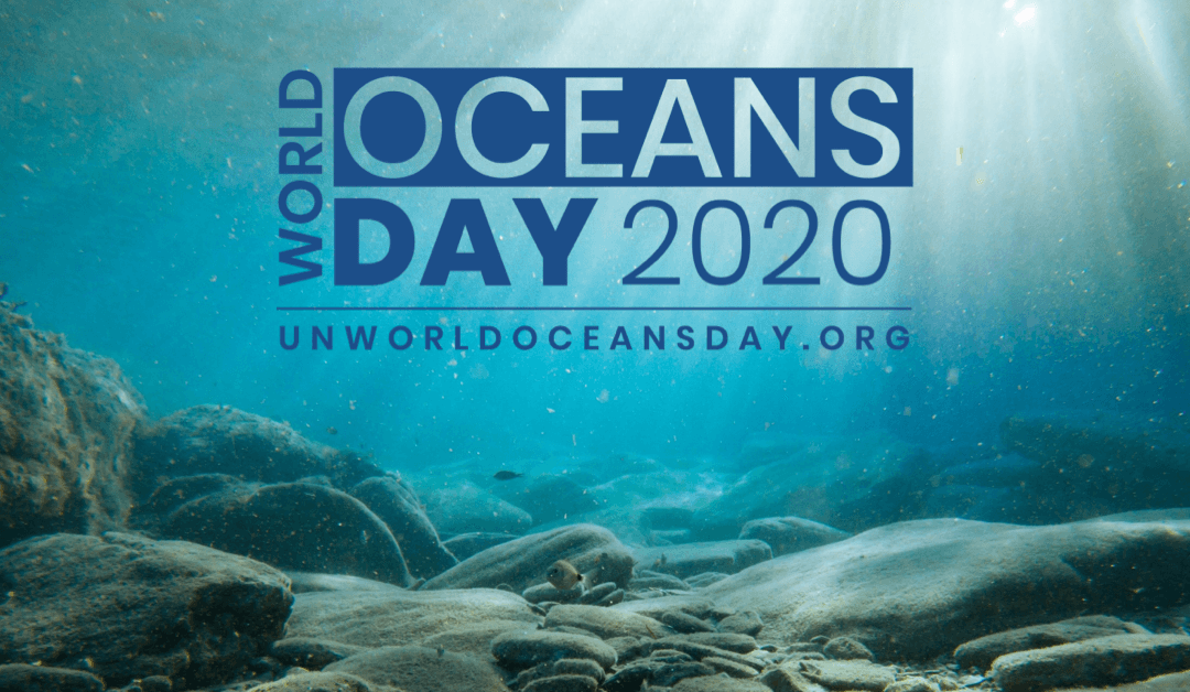 Our Ocean Is Our Future – World Oceans Day 2020